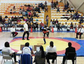 Realizan en Celaya Campeonato Estatal Selectivo de Artes Marciales rumbo a los JNP 2019